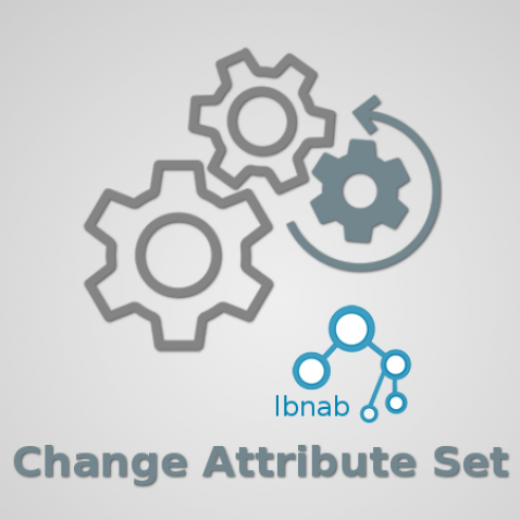 Magento 2 Change Attribute Set